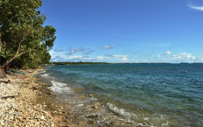 High tide along the lagoon side of Fongafale Island, Funafuti Atoll, Tuvalu
