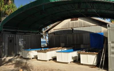 Tokyo University FORAM star sand project located near the port, Funafuti Atoll, Tuvalu