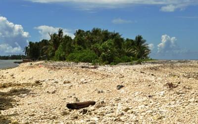 The western end of Fongafale Island, Funafuti Atoll, Tuvalu - lagoon on the left, ocean on the right