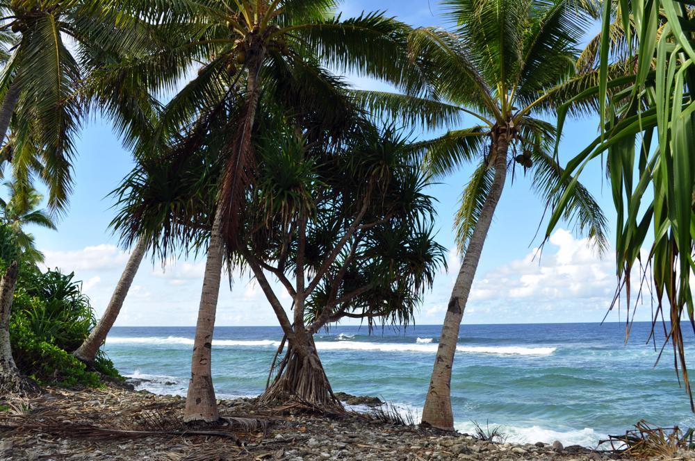 Pacific Ocean coast, Funafuti Atoll, Tuvalu