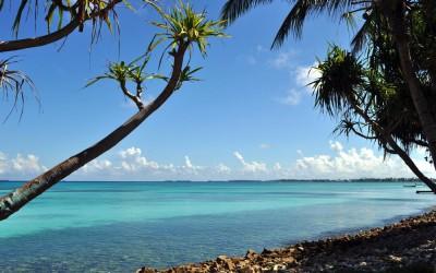 Looking down the coast of Fongafale Island, Funafuti Atoll, Tuvalu
